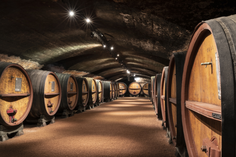 Cave Terre des Brouilly